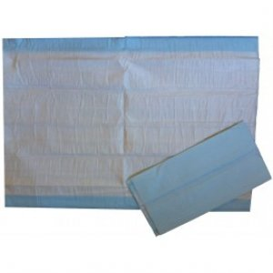 Bed Protector (Bluey) 40cm x 60cm
